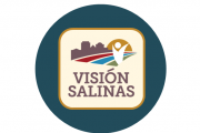 vision salinas logo in blue circle