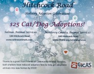 $25 adoption fee flyer for Hitchcock Road Adoption Celebration
