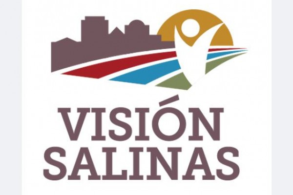 Vision Salinas logo purple, bronze, red, blue and green