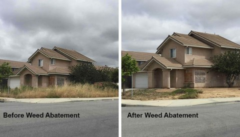 Weed abatement before and after photos