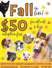 "Flyer with dogs and cats ""$50 adoption fee for all dogs and cats"""