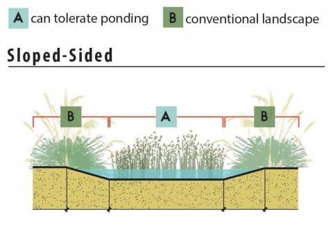 Bioretention Types Sloped-sided Diagram