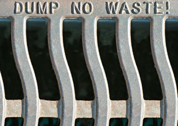Dump no waste drain cover