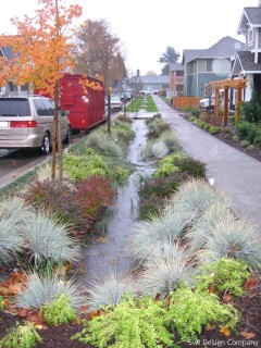 Example of Bioretention Facilities - High Point Community - Credit SVR Design