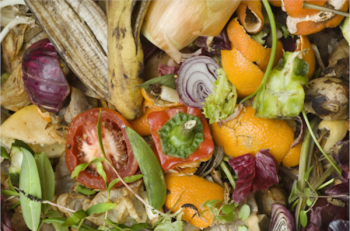 Organics Recycling - Food Scraps